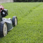 Mowing for a Healthier Lawn