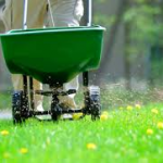 Fertilizer 101: The Why, What, How, and When to Fertilize Your Lawn